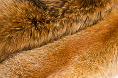Crafted fox skin stock image