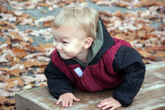 Craftiness. Wily boy picks up on the bench Royalty Free Stock Photography