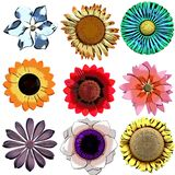 Craftmans Flower Collection 1 Royalty Free Stock Photography