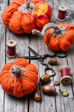 Crafts with pumpkins Stock Photography