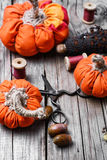 Crafts with pumpkins Royalty Free Stock Photography