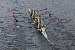 Craftsbury Sculling Center races in the Head of Charles 2014 Stock Images