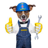 Craftsman dog Stock Photo