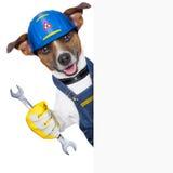 Craftsman dog Royalty Free Stock Images