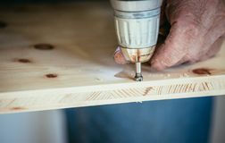 Craftsman is drilling in wood with drilling machine. Tools workman handcrafter power screw trade woodwork furniture skill talent carpenter joiner amateur royalty free stock images