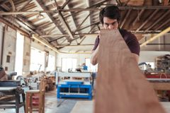 Craftsman skillfully inspecting a plank of wood in his workshop. Skilled young craftsman wearing an apron examining a plank of wood for quality while working Royalty Free Stock Photos