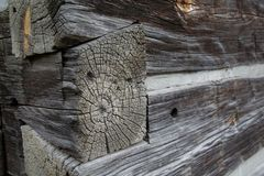 Craftsmanship Of A Log Builder. Dovetail log joint of a historic log home showing the craftsmanship of the construction done only with hand tools stock photography