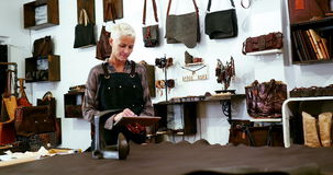 Craftswoman χρησιμοποιώντας την ψηφιακή ταμπλέτα φιλμ μικρού μήκους