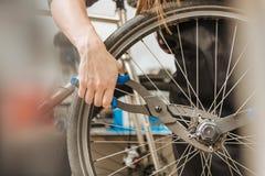 In craftswoman esperto che ripara la catena della bicicletta Immagini Stock Libere da Diritti