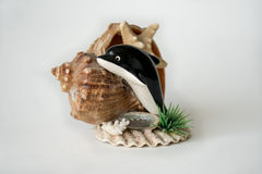Craftwork with sea shell and starfish Royalty Free Stock Photo