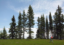 Crag Crest Cruiser. A hiker strolls alon the top of the Crag Crest Trail Royalty Free Stock Photos