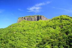 Crag mountain with fresh verdure Royalty Free Stock Photography