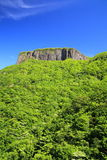 Crag mountain with fresh verdure Stock Photos
