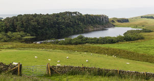 Cragg Lough on the Roman Wall. Northumberland, England. Royalty Free Stock Image