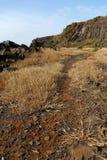Craggy coastline Stock Images
