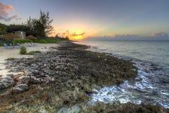 Craggy kustsolnedgång för storslagen kajman Arkivbild