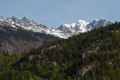 Craggy mountains. Rise above the forest near Skagway, Alaska royalty free stock image