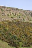 Crags di Salisbury, sosta di Holyrood, Edinburgh fotografia stock