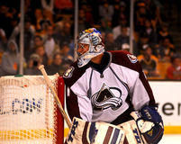 Craig Anderson Colorado Avalanche Stock Images