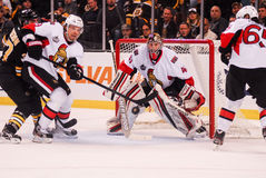 Craig Anderson Ottawa Senators Royalty Free Stock Photo