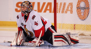 Craig Anderson Ottawa Senators Stock Image