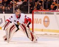 Craig Anderson Ottawa Senators Stock Images