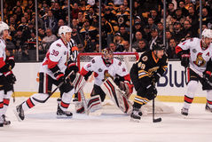 Craig Anderson Ottawa Senators Royalty Free Stock Photo