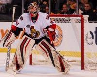 Craig Anderson Ottawa Senators Royalty Free Stock Image