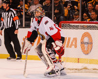 Craig Anderson Ottawa Senators Royalty Free Stock Images