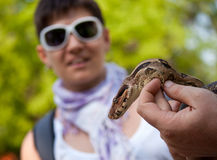 Crainte de serpent photo libre de droits