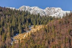 craiului国家公园piatra罗马尼亚 免版税库存图片