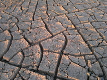 Craked land. A thirsty cracked land on the earth stock images