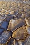 Craked mud Stock Image