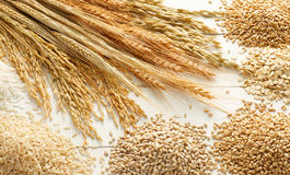 Céréales et textures Photo stock