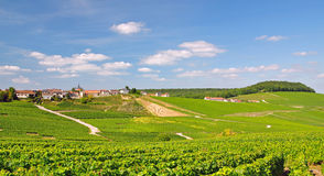 Cramant,Champagne,France. The Village of Cramant in the french Champagne Region near Epernay Royalty Free Stock Photos
