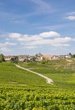 Cramant,Champagne Region,France Stock Photos
