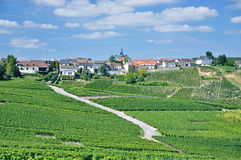 Cramant, Champagne-Region, Frankreich Stockbilder