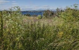 Cramondeiland, Schotland - blauwe wateren en groen gras stock foto