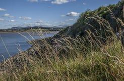 Cramondeiland, Schotland, het UK - een mening van het omringende gebied door gras stock afbeeldingen