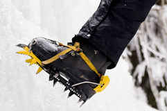 Crampons. Mountain climber's feet with crampons on the boots stock photo