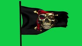 ?cran graphique de vert d'?l?ment de Roger de pirate de drapeau gai de bateau banque de vidéos