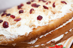 Cranberrie cake Royalty Free Stock Images