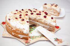 Cranberrie cake homemade Royalty Free Stock Photos