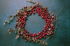 Cranberrie ram på mörk bakgrund Den bästa sikten, hudflänger lekmanna- royaltyfri fotografi