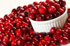 cranberries świezi obrazy stock