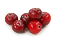 Cranberries Royalty Free Stock Photos