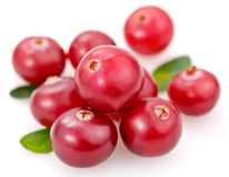 cranberries Zdjęcia Royalty Free