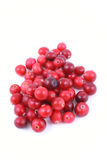 Cranberries Royalty Free Stock Image