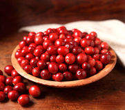 cranberries Arkivbild