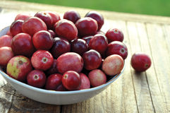Cranberries. Fresh cranberries in a white bowl on wooden background Stock Image